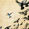 6 - bird