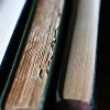 30 - books