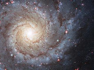 Спиральная галактика M74 из созвездия Рыб