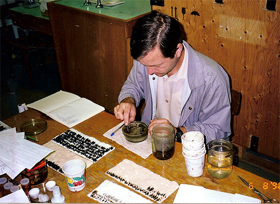 ор почвенных ловушек и сортировка насекомых в лаборатории, 1986 г.