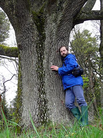 Георгий Козулько в Беловежской пуще, 2010 г.
