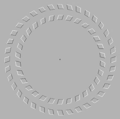 Иллюзия кручения кругов