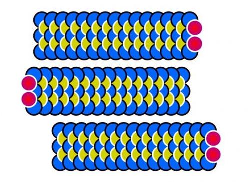Иллюзия движения в разные стороны