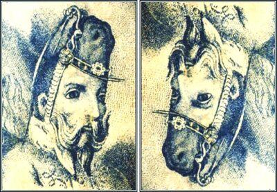 Иллюзии перевёрнутой картинки