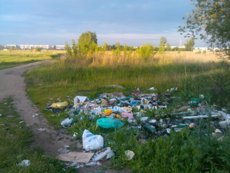 Свалка мусора у Лисятника у НГ
