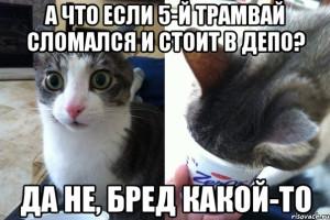 da-ne-bred-kakoy-to_62123742_orig_