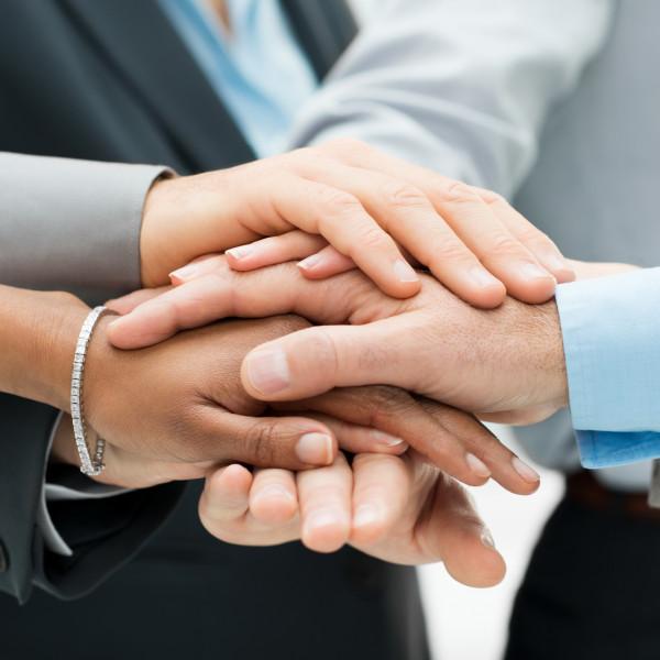 Своими руками сотрудничество