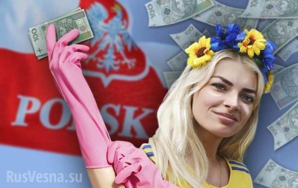 Украинская молодежь не собирается возвращаться домой после обучения в Польше