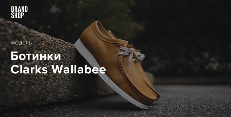 История ботинок Clarks Wallabee