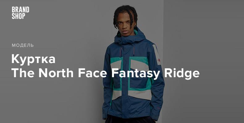 """Куртка The North Face Fantasy Ridge, вдохновленная """"последней большой проблемой"""""""