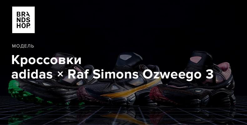 История модели кроссовок adidas Originals × Raf Simons Ozweego 3