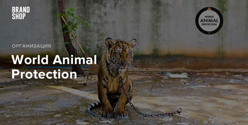 Всемирная Организация Защиты Животных