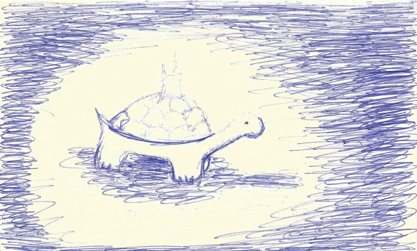 candle on back of turtle.jpg