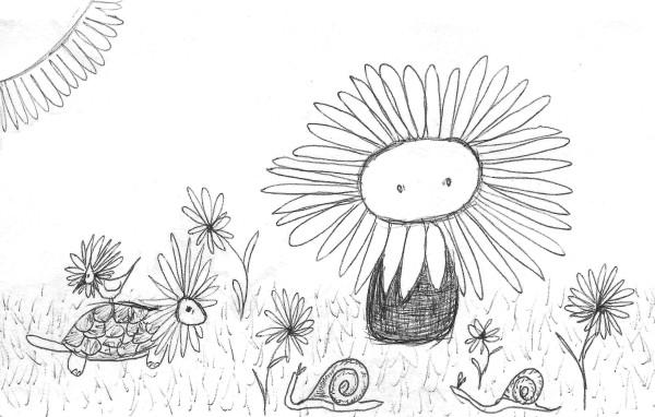 daisies (2).jpg