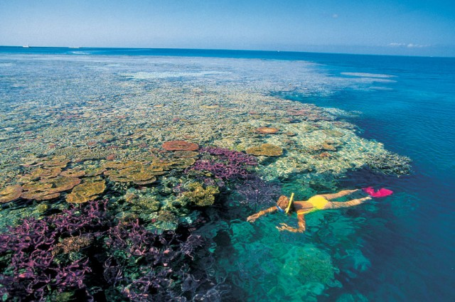 lord of the flies coral island