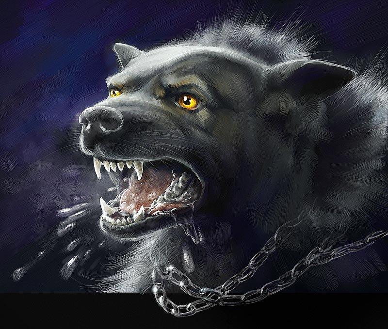 1235234237_chain_dog_008