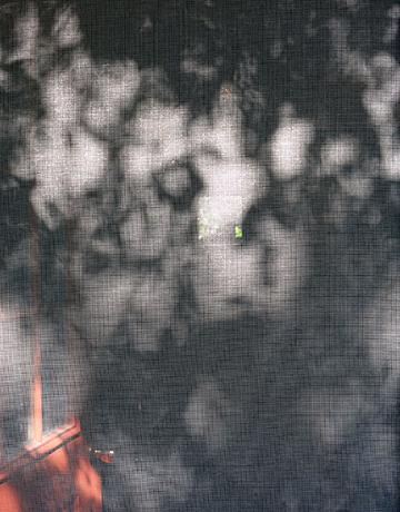 Aug screen door shadows for web