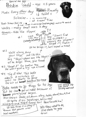 Bodie Vet care taker sheet web_edited-1