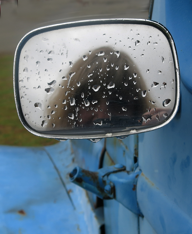 Selfie Blie Truck Vt. web