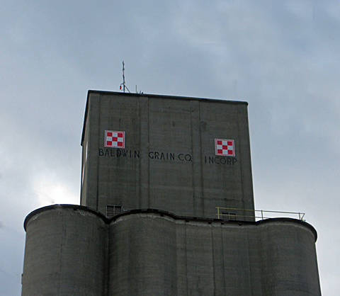 Jan 5 Grain web