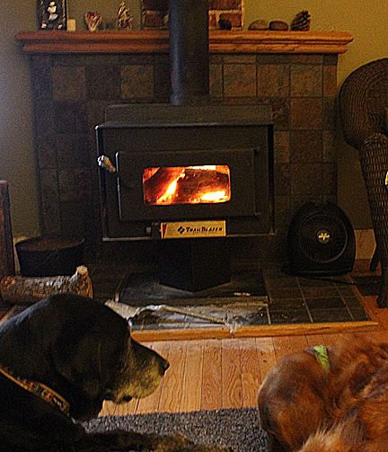 Jan 13 dogs and stove_edited-2
