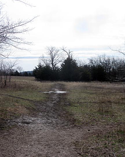 Mar 12 path