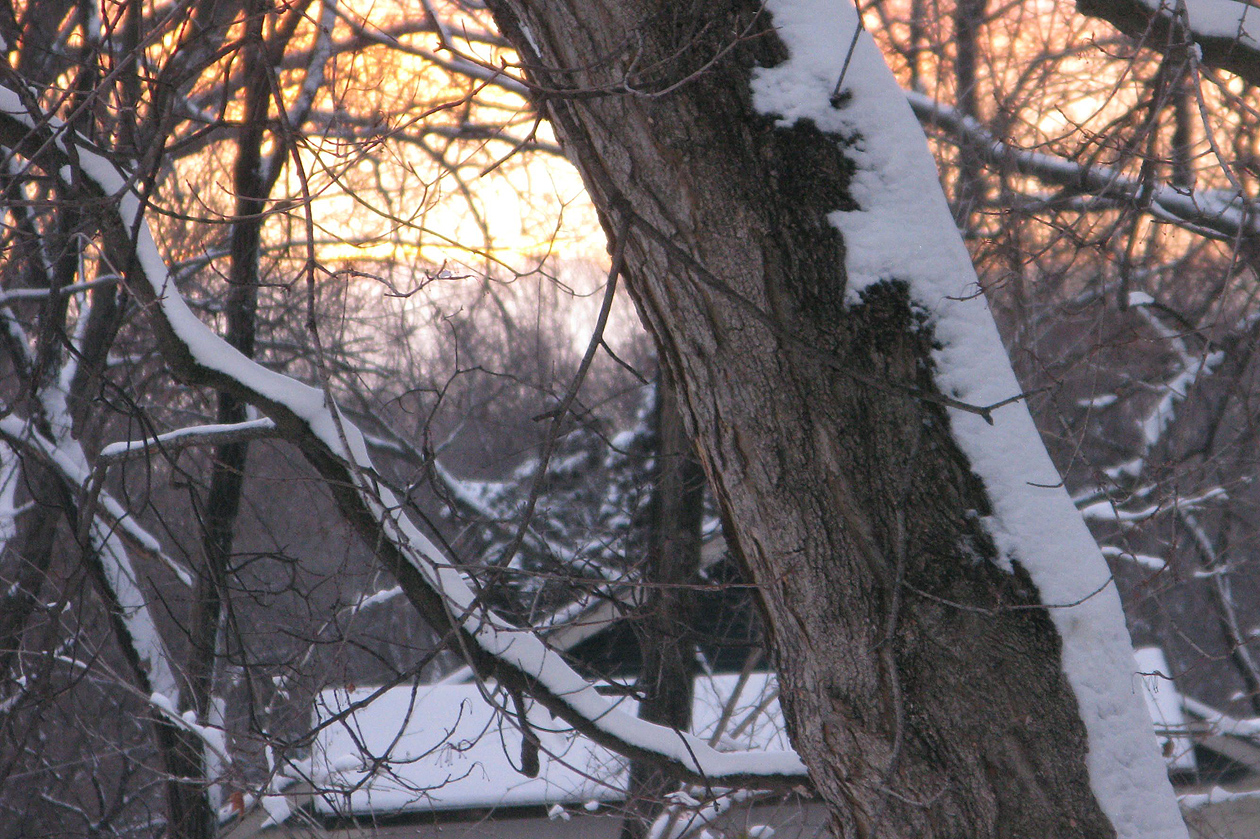 mar 24 snow