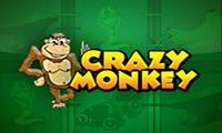crazy-monkey-sloty-avtomaty
