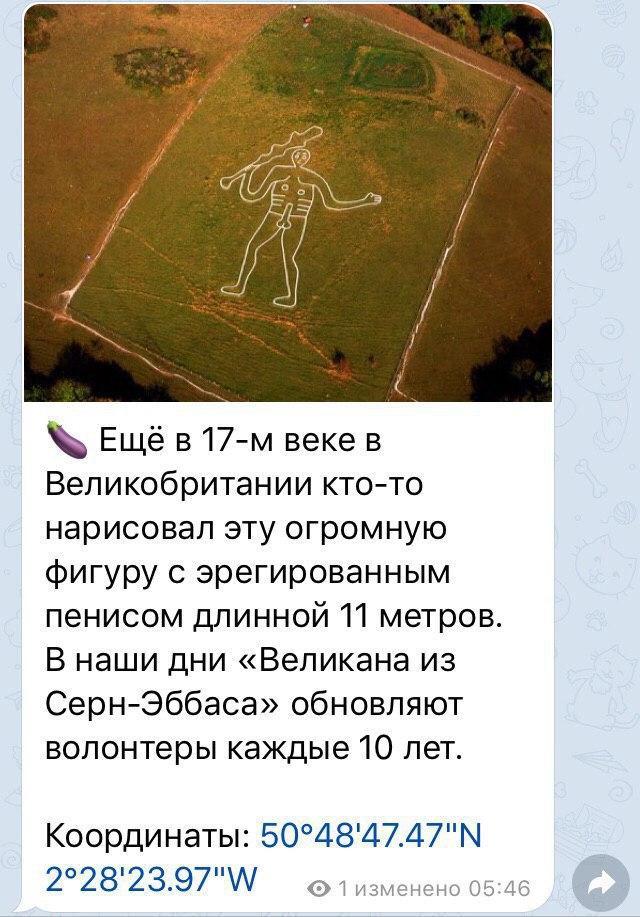 photo_2020-02-15_19-14-57 (2)