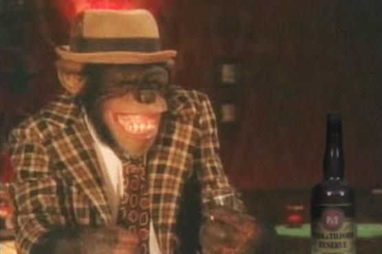 crazy_monkeys_06