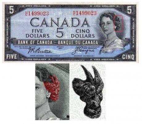 банкноты1