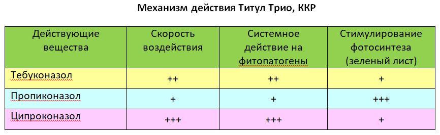 Титул трио_4.JPG
