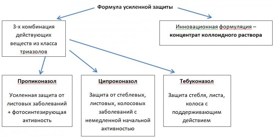 Титул трио_5.JPG