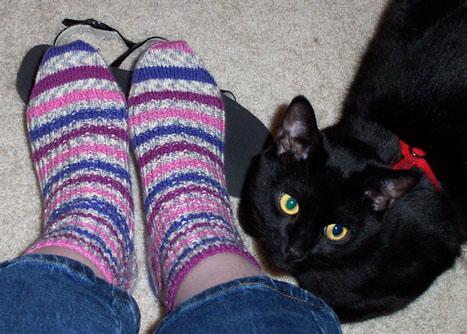 Step Socks and Spook
