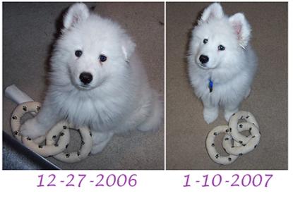 I've grown!