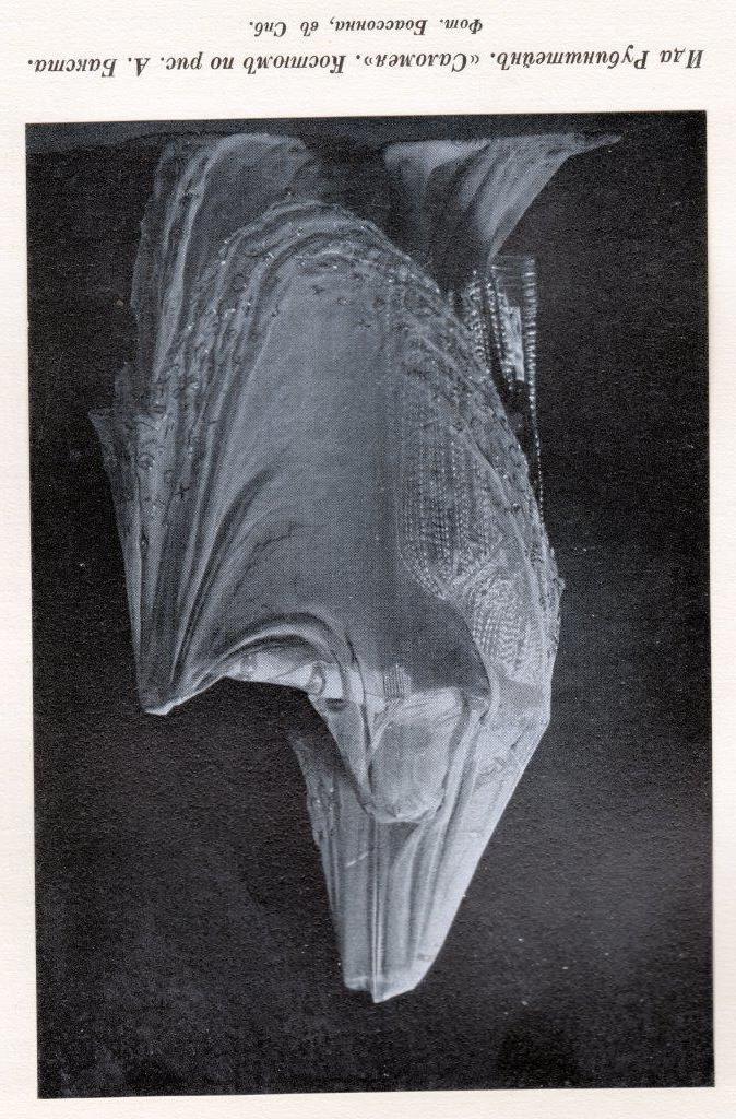 В. Светлов. Современный балет. СПб. 1911 г. Собрание автора публикации.