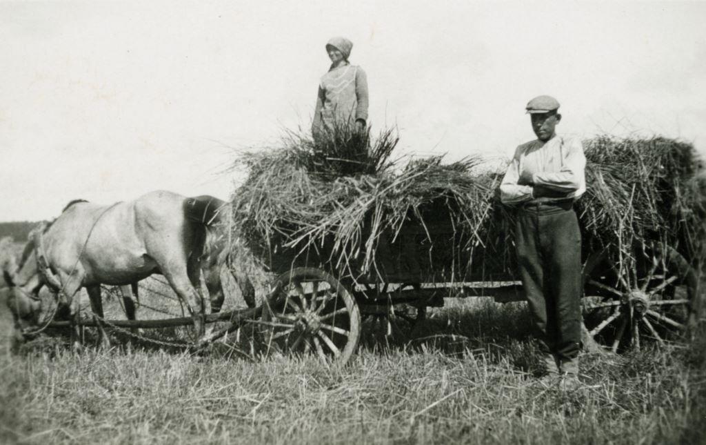 Лето в литовской деревне... Фото сер. 1940х из архива О.И.Дубенецкене-Калпокене.