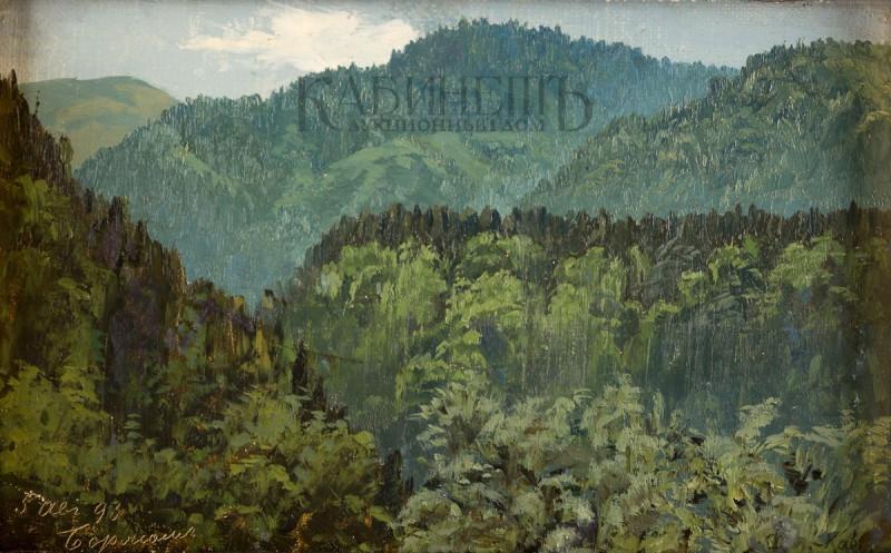 Лев Евграфович Дмитриев-Кавказский. Боржом. 1893г.