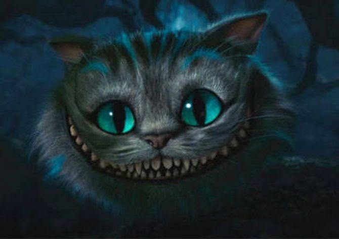cat_smile.jpg
