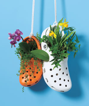 new-uses-clogs-planters_300