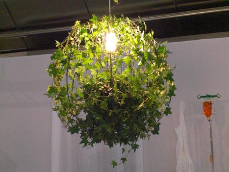 Лампа для растений своими руками фото