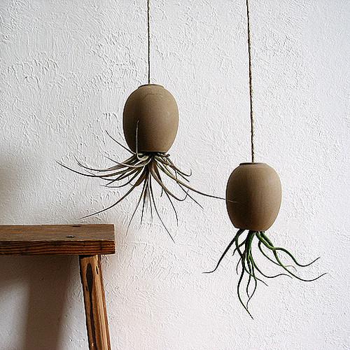 132083_0_8-4677-modern-indoor-pots-and-planters