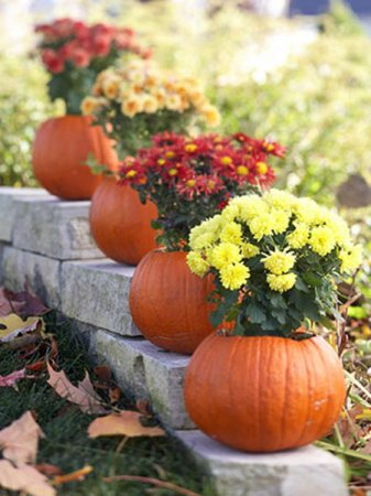 1317153158_pumpkin-as-vase-creative-ideas5
