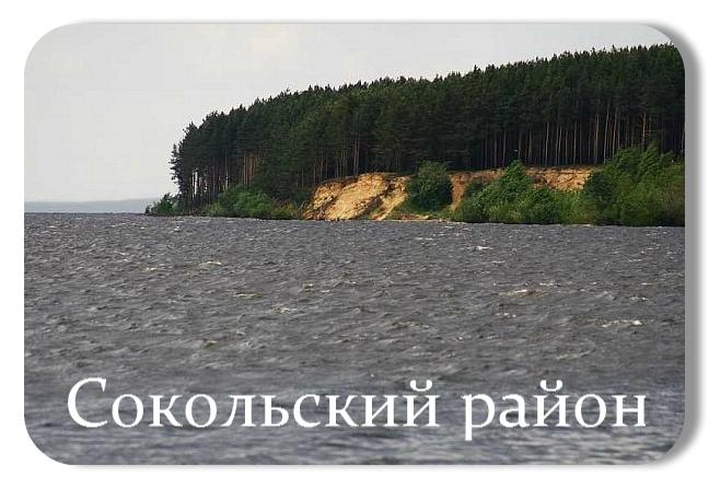 Сокольский район