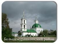 Большемурашкинский район