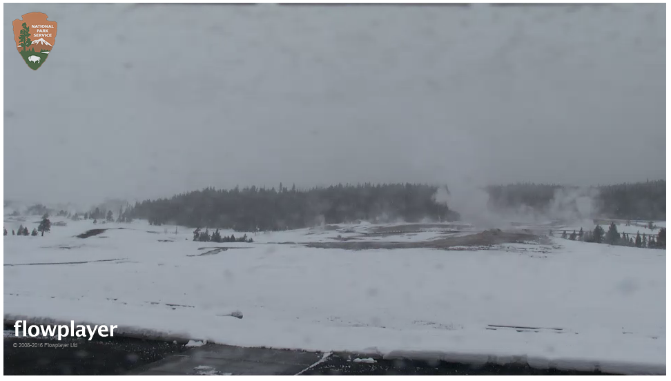 yellowstone-webcam.png