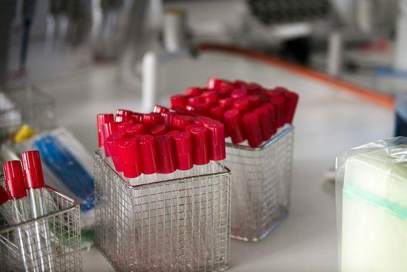 По словам фирмы, препарат поможет в ситуациях, когда охват вакцинацией может остаться слишком низким для коллективного иммунитета. Изображение: Tiina Jutila / Yle