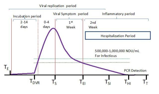 Рисунок 3: Этапы C19. К моменту госпитализации репликация вируса сильно снижена / отсутствует. Нежизнеспособные фрагменты РНК SCoV2 вызывают подавляющую воспалительную реакцию (источник, доктор Пьер Кори, FLCCC). Используется с разрешения FLCCC