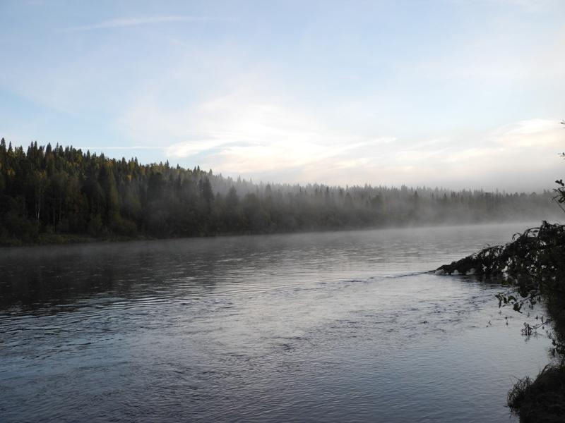вишера рыбалка отчет 2016