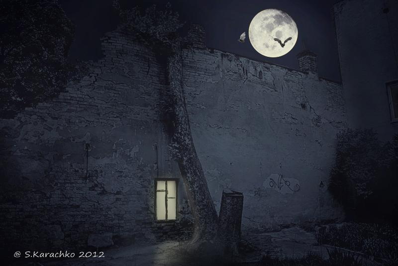 Черновицкий двор ночью__